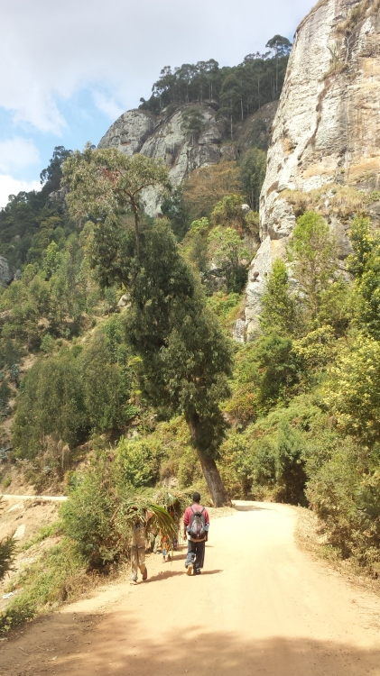wandern usabara berge
