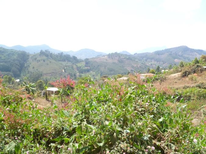 Landschaft Tansania Usambara-Berge