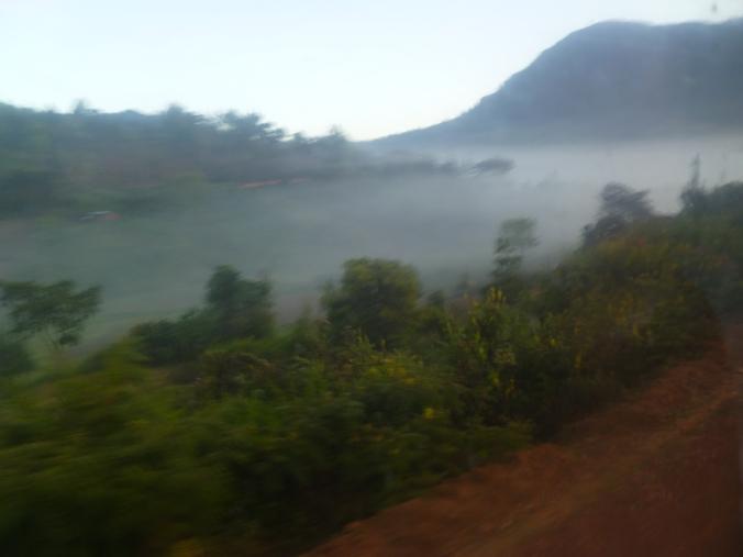 Morgens Nebel Tansania Usambara-Berge