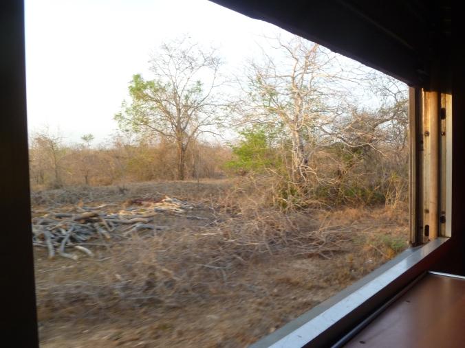 Fenster Zug TAZARA